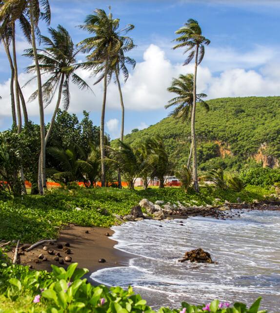 Природа и Пляжи Гуама