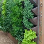 Дизайн маленького сада. Вертикальное озеленение.