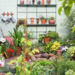 Дизайн маленького сада. Цветочные горшки для сада. Декорирование стен.