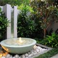 garden_-ava