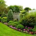 Дизайн маленького сада. Цветочные клумбы.