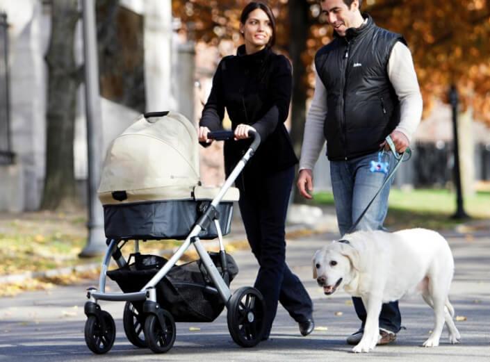 UPPAbaby Vista 2 в 1. Лучшие коляски для новорожденных.