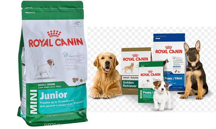 Royal Canin. Рейтинг лучших сухих кормов для собак 2018