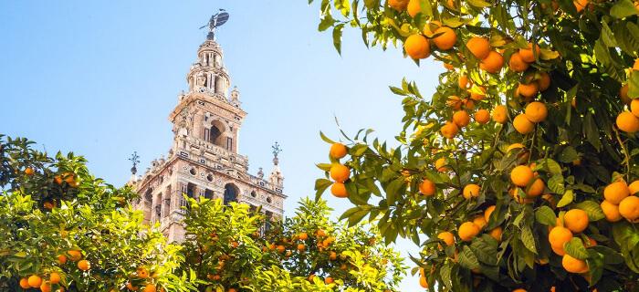 Севилья /Sevilla