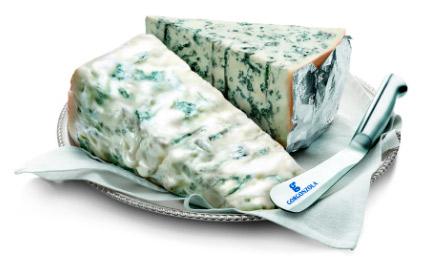 Горгондзола (Gorgonzola) самый вкусный сыр с плесенью, Самые вкусные сыры